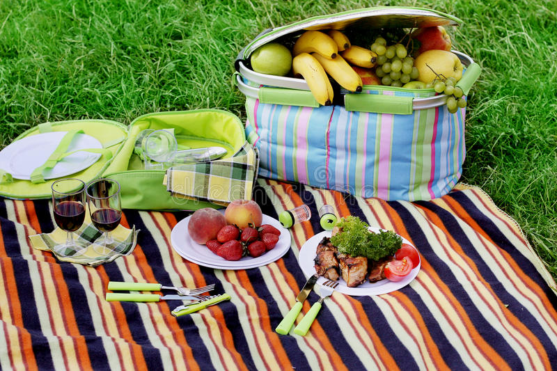 Download Picnic stock image. Image of wine, kebab, strawberry - 16457263
