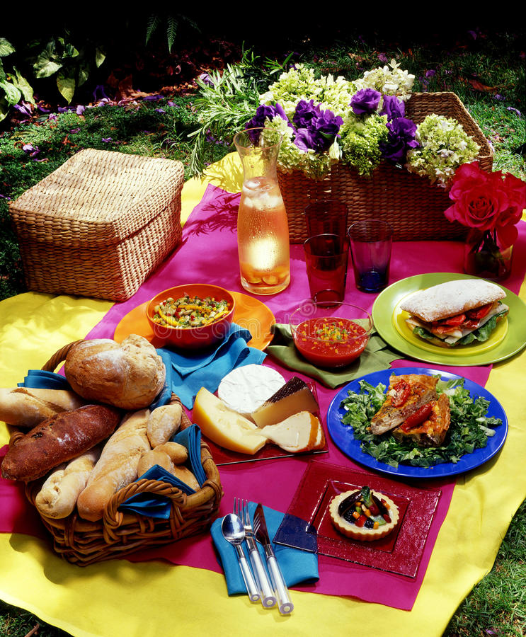Download Picnic stock image. Image of wine, garden, picnic, outdoor - 17028803