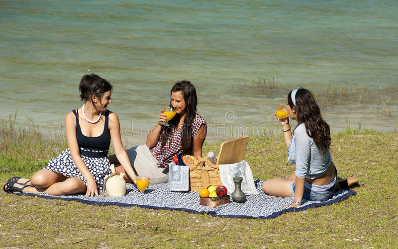Download Picnic stock image. Image of relaxing, lakeside, grass - 20044659