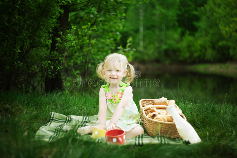 Download Picnic stock image. Image of mikl, people, cheerful, healthy - 26414107
