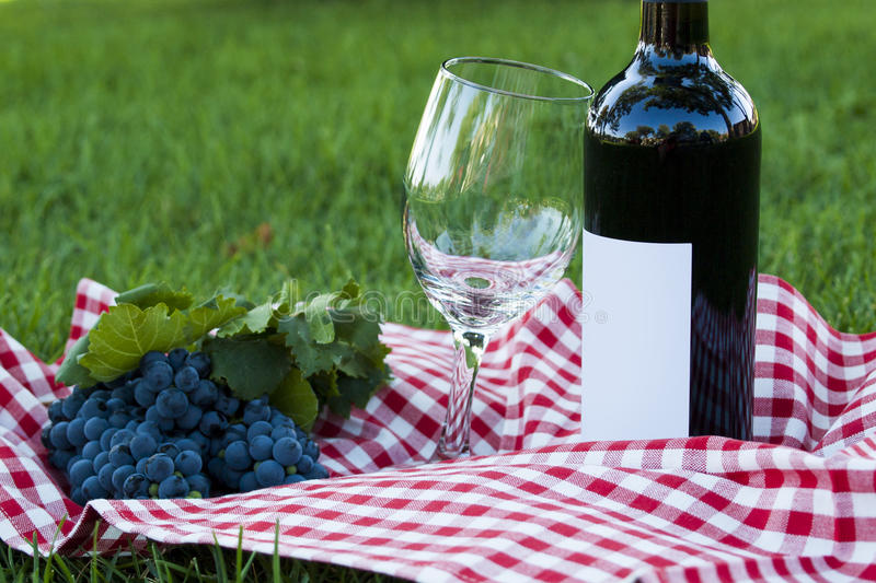 Download Picnic stock photo. Image of outdoors, lawn, kitchenware - 26539850