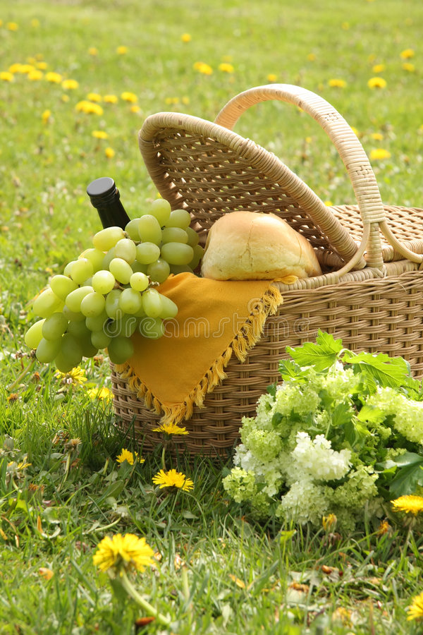 Download Picnic stock photo. Image of grass, bloom, spring, basket - 9082966