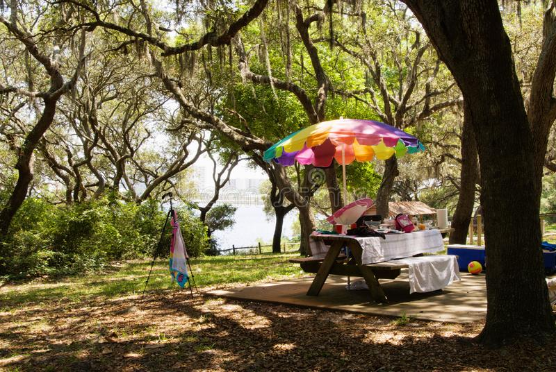 Picnic Area at Camp Helen State Park in Florida stock photography