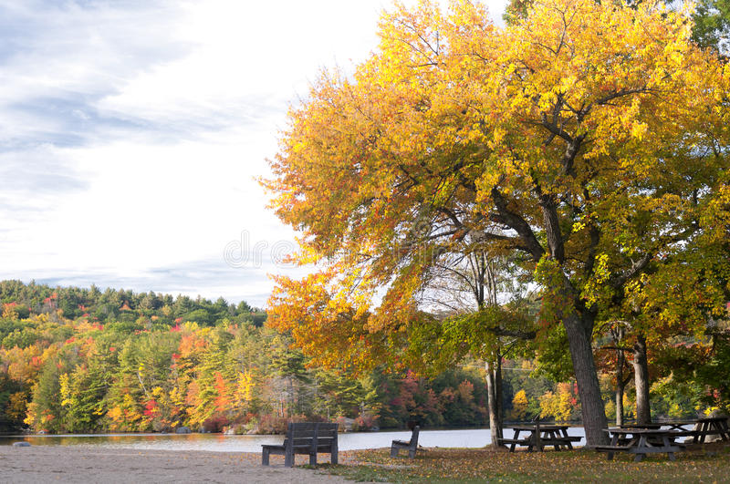 Picnic area in the Fall royalty free stock image
