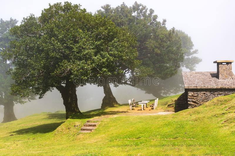 Picnic area near Fanal in fog and sun, Madeira stock photography