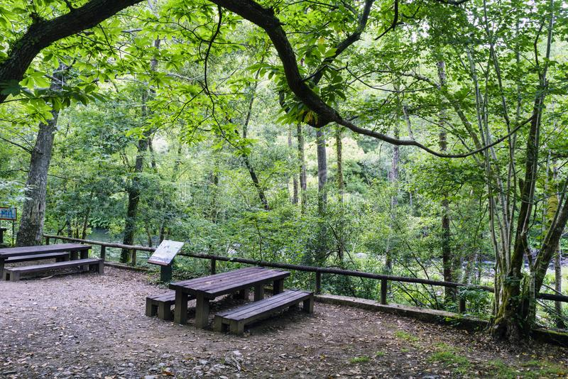 Picnic area with tables and wooden benches next to the river Eume in Galicia, Spain. Zone very wooded and very green. stock image