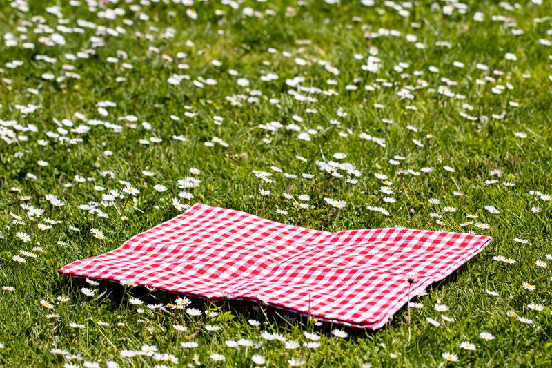 Picnic background. Red checkered picnic cloth on a daisy meadow with focus on napkkin. Beautiful backdrop for montage. Picnic background. Red checkered picnic royalty free stock photography