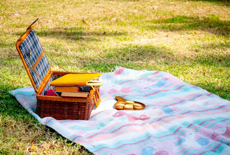 Picnic bag with blue pattern contains some books is on blue and pink carpet also near plate of cookies. The concept of relaxation. In garden on summer or royalty free stock photo
