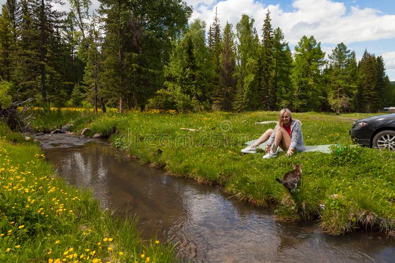 A picnic on the bank of a mountain river with green grass and yellow flowers against the background of coniferous trees and a blue royalty free stock image