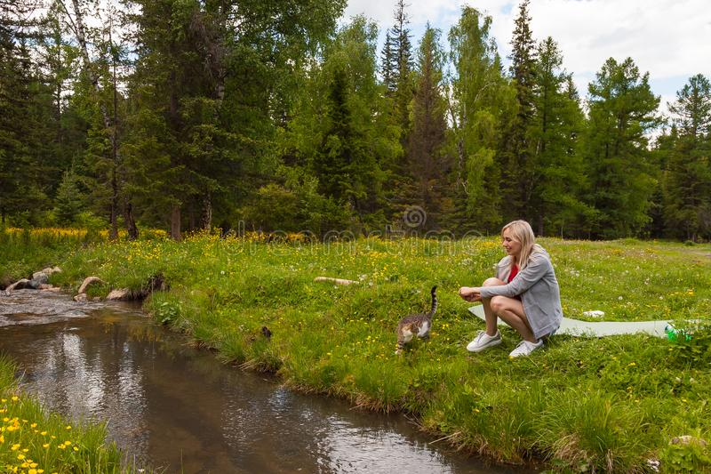 A picnic on the bank of a mountain river with green grass and yellow flowers against the background of coniferous trees and a blue royalty free stock images