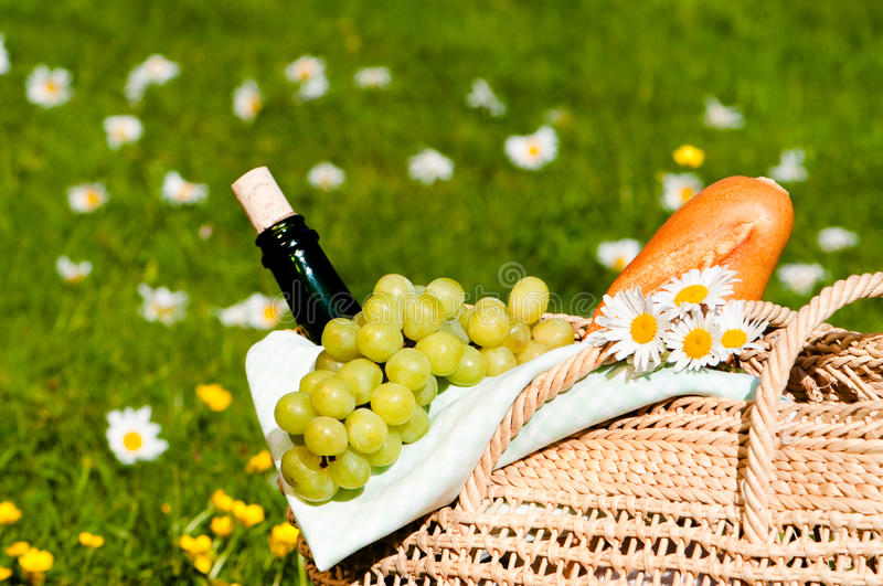 Download Picnic Basket stock photo. Image of beverage, meadow - 10338966