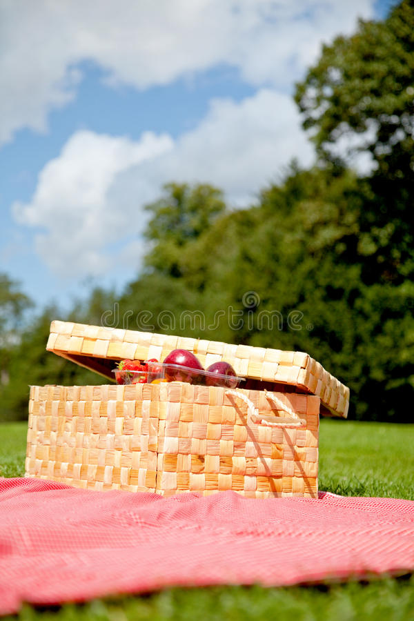 Download Picnic basket stock photo. Image of cookout, meal, basket - 12915910