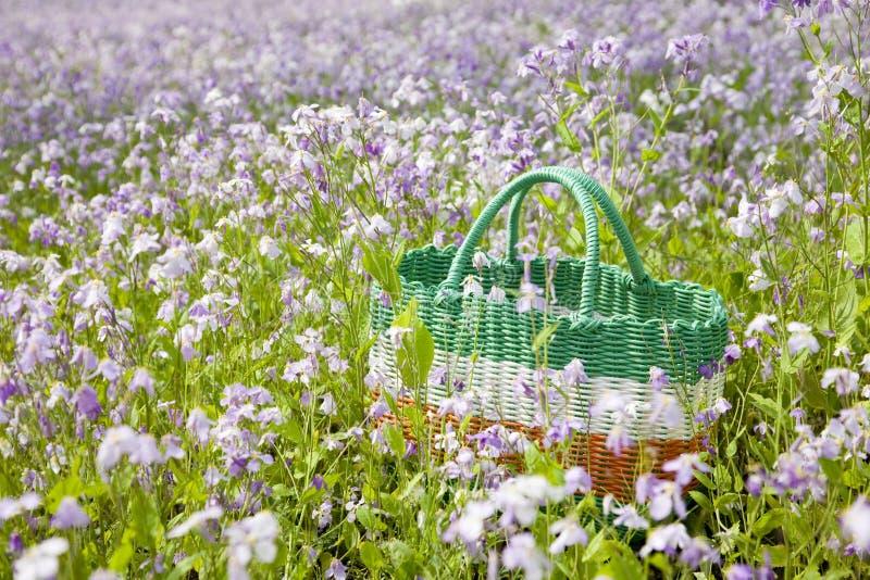 Download Picnic basket stock photo. Image of horizontal, picnic - 14475994