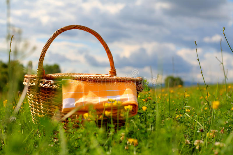 Download Picnic basket stock photo. Image of grass, napkin, meadow - 20111292