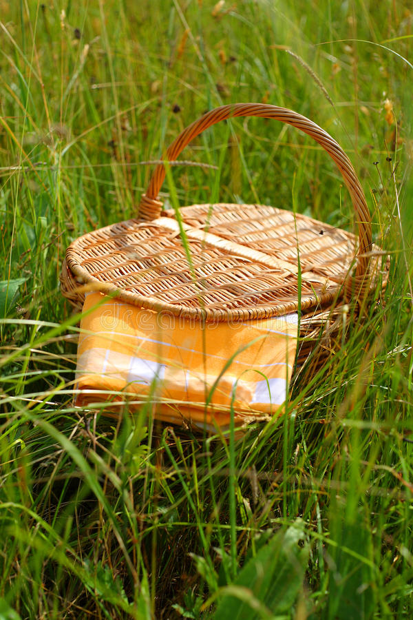Download Picnic basket stock photo. Image of green, health, sunset - 20111316