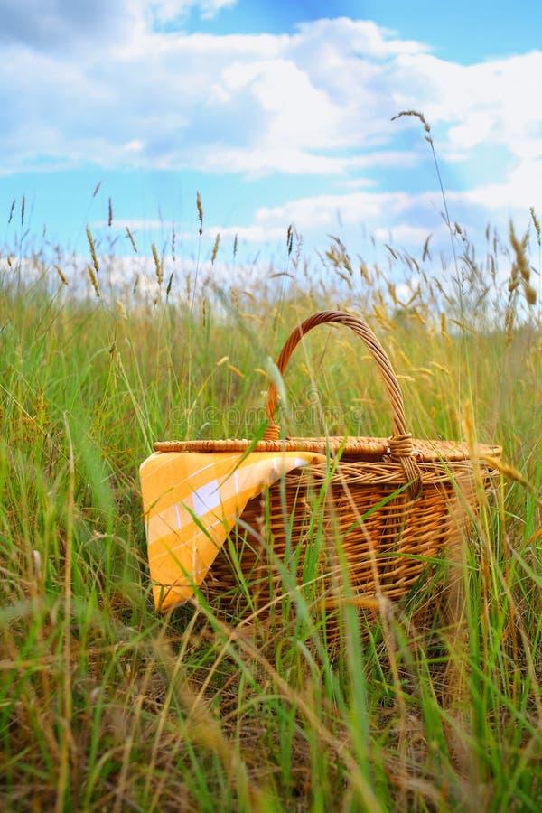 Download Picnic basket stock image. Image of health, towel, field - 20111401