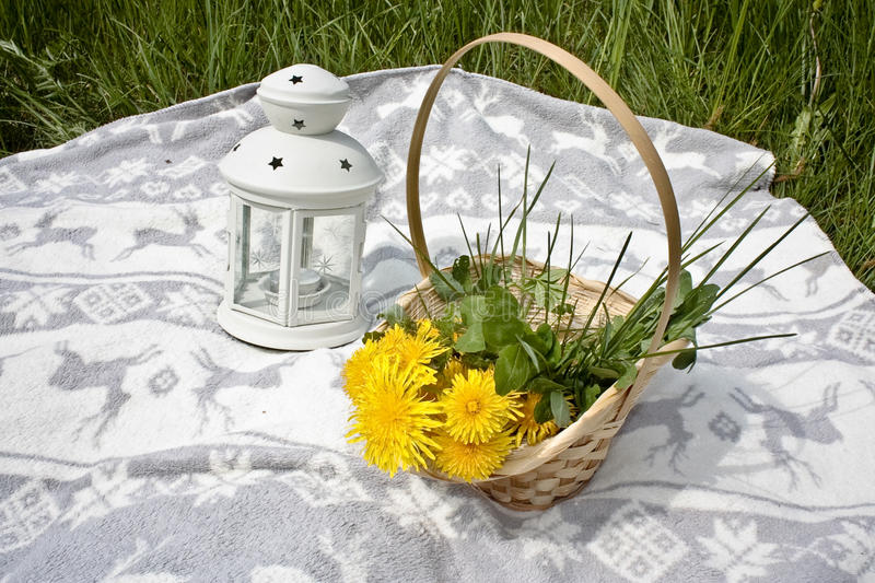 Picnic, basket with dandelios and lamp royalty free stock image