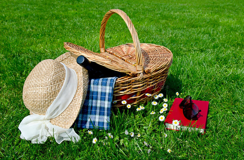 Download Picnic basket in the field stock photo. Image of garden - 24649004