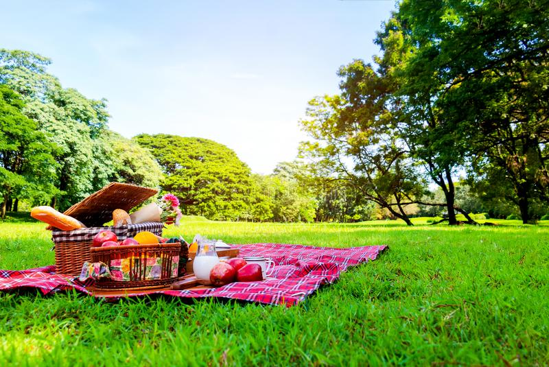 Picnic basket has a lot of food on green grass with blue sky in park stock photography