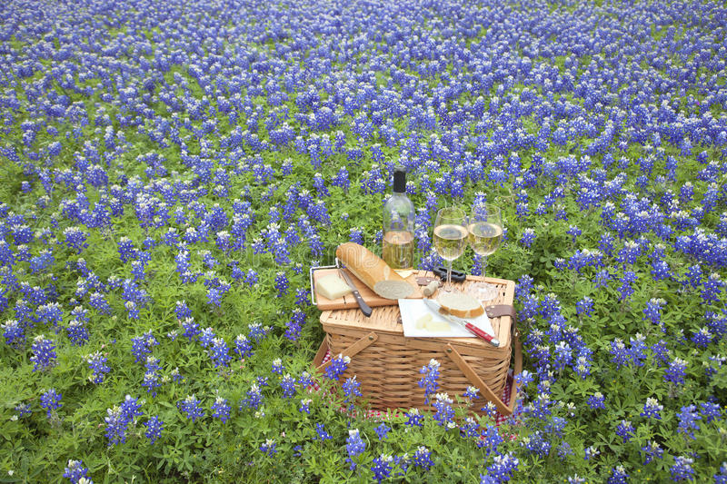 Picnic basket with wine, cheese and bread in a Texas Hill Countr. A brown wicker picnic basket with wine, cheese, bread and utensils in a field of Texas Hill stock photos