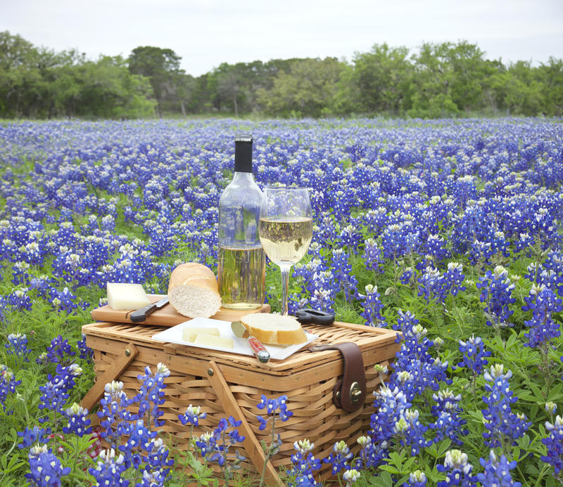 Picnic basket with wine, cheese and bread in a Texas Hill Countr. A brown wicker picnic basket with wine, cheese, bread and utensils in a field of Texas Hill stock images