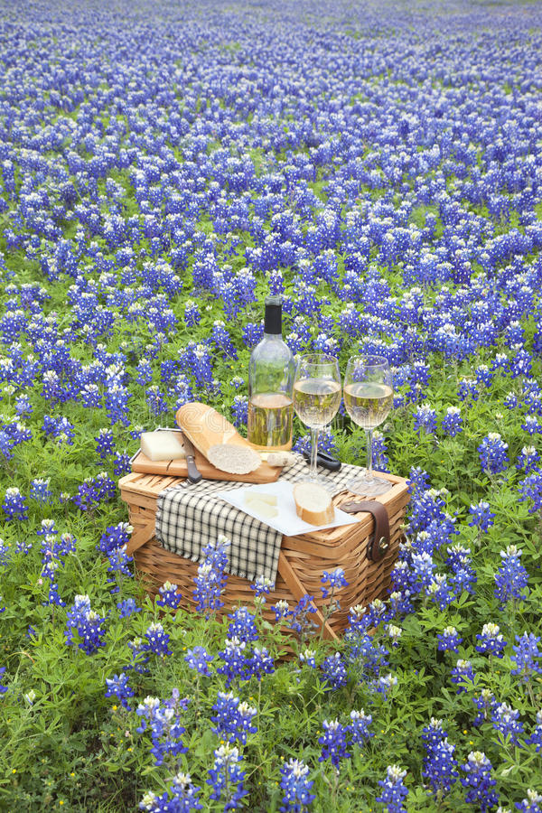 Picnic basket with wine, cheese and bread in a Texas Hill Country bluebonnet field. A brown wicker picnic basket with wine, cheese, bread and utensils in a field stock photos