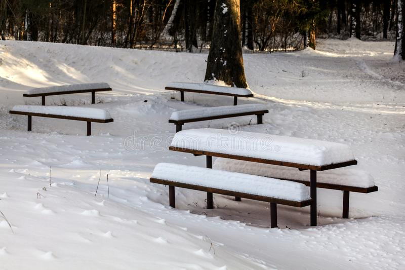 Picnic benches and desk covered with deep snow during winter, sun shines through forest trees in background stock images