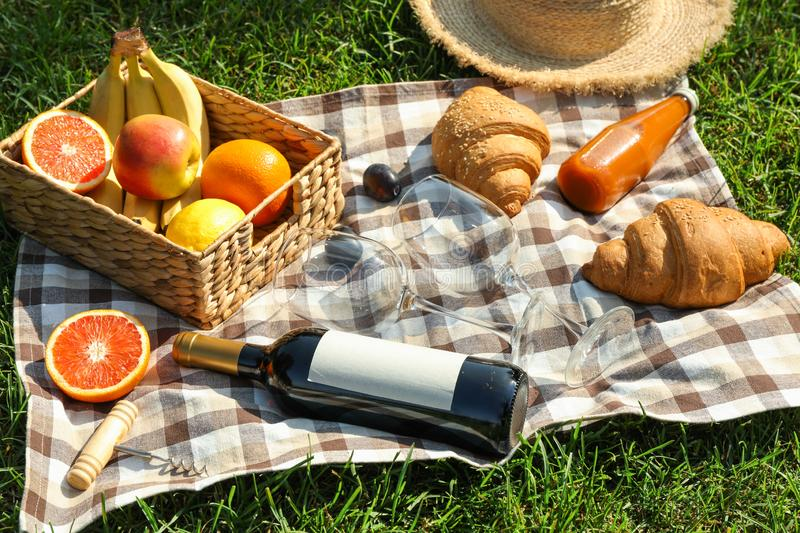 Picnic composition with wine and food against green grass. Empty space stock photos