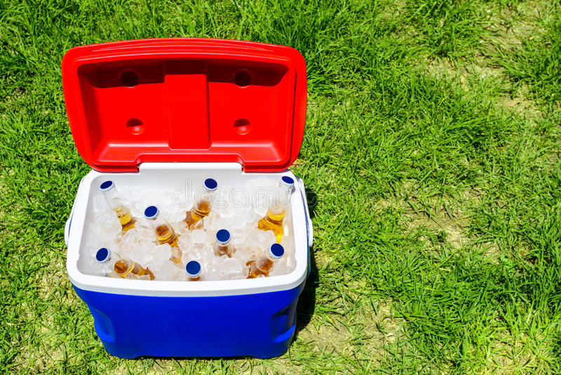 Picnic cooler box with beer bottles. Picnic cooler box with bottles of beer in ice on grass during Australia Day celebration royalty free stock image