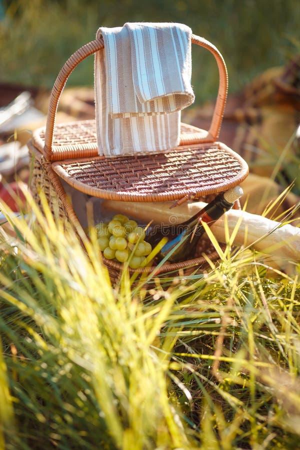 Picnic del canestro di frutta fotografie stock