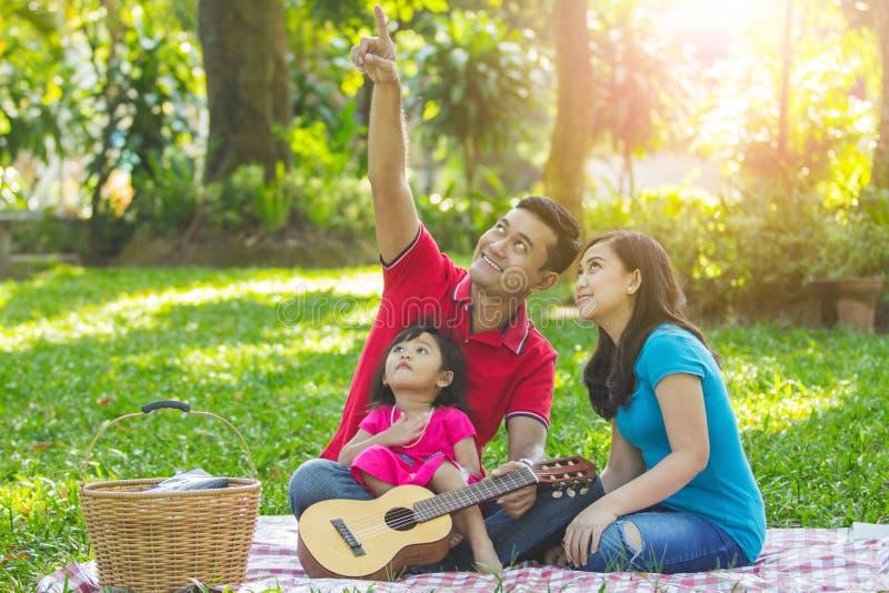 Picnic della famiglia che esamina il cielo immagini stock libere da diritti