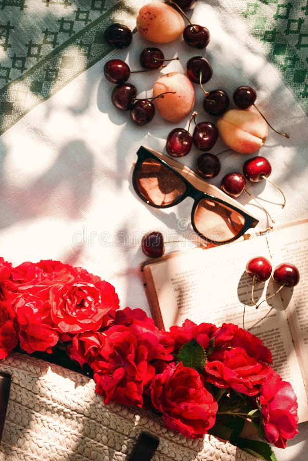 Picnic di estate nel giardino con le rose rosse del giardino in una borsa di vimini, in occhiali da sole e nelle bacche della cil fotografie stock libere da diritti