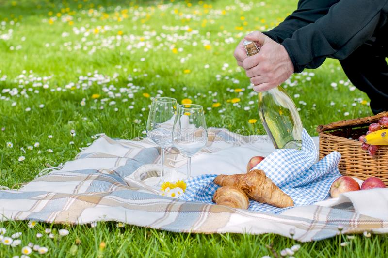 Picnic on the green palana in the park. A man opens a bottle of wine. Romantic dinner in nature. Free space for text. Spring in stock photos