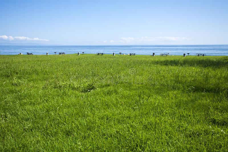 Picnic grounds in grassy field at the ocean stock image image of download picnic grounds in grassy field at the ocean stock image image of capitan voltagebd Images