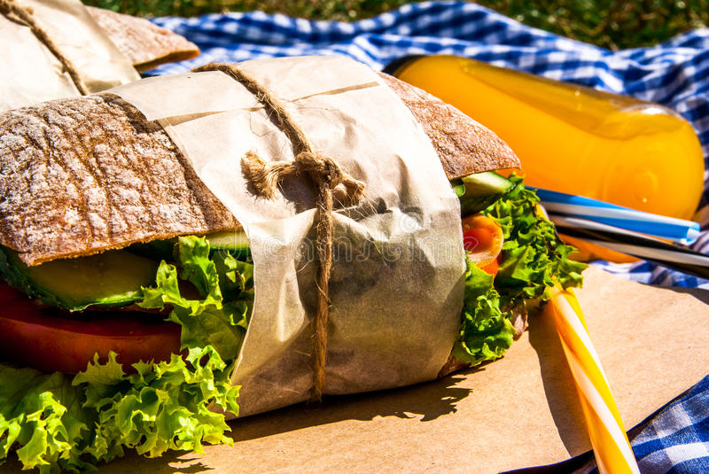 Picnic with homemade sandwiches stock photo