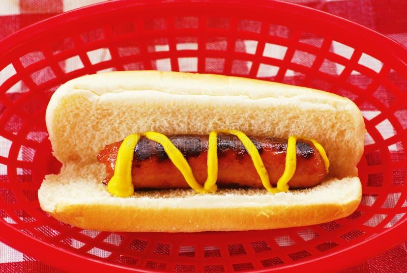 Picnic Hot Dog Stock Image