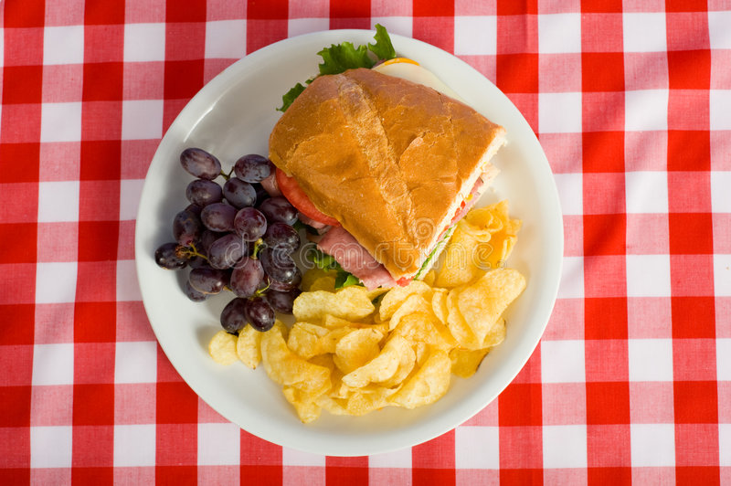 Download Picnic Lunch stock photo. Image of snack, beef, tablecloth - 5189574