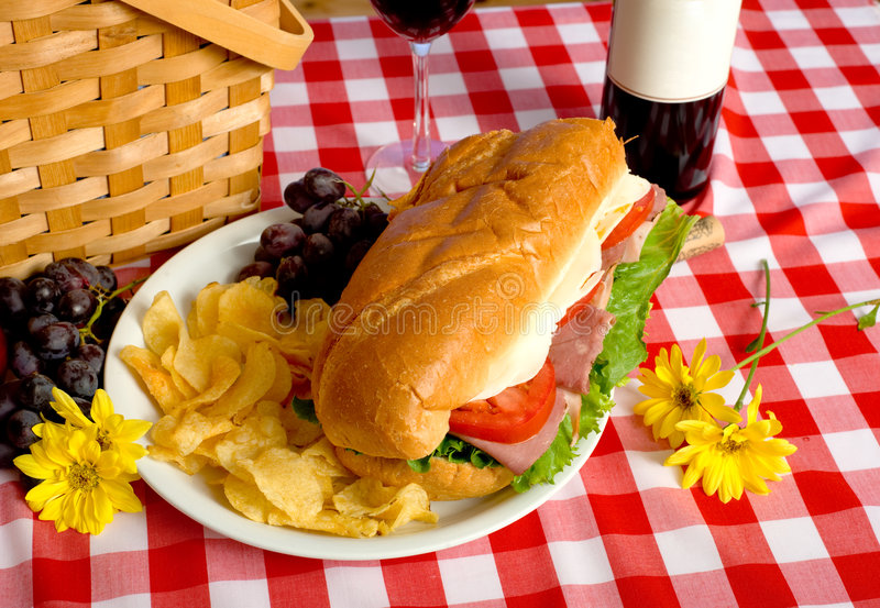 Download Picnic Lunch stock image. Image of dinner, grapes, space - 5198101
