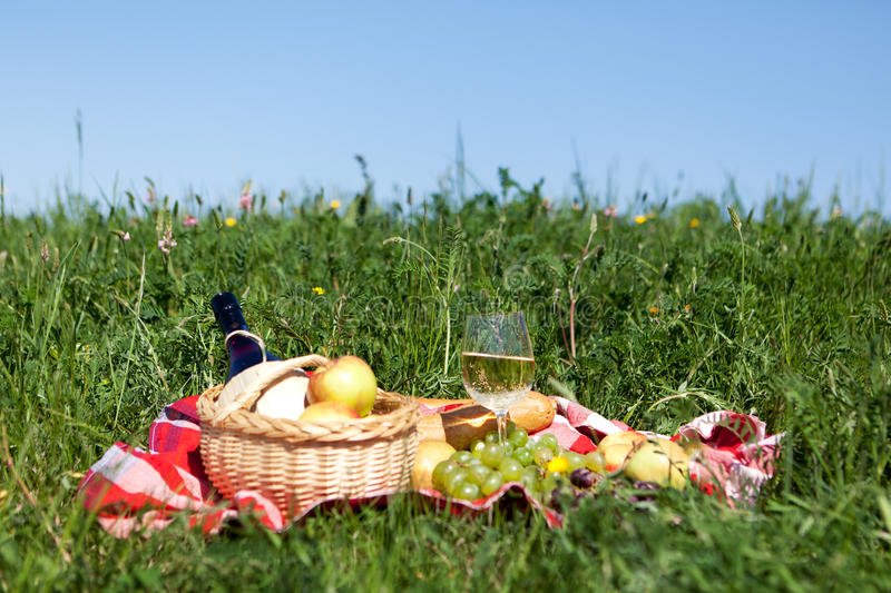 Download Picnic on meadow stock image. Image of basket, meadow - 24569399