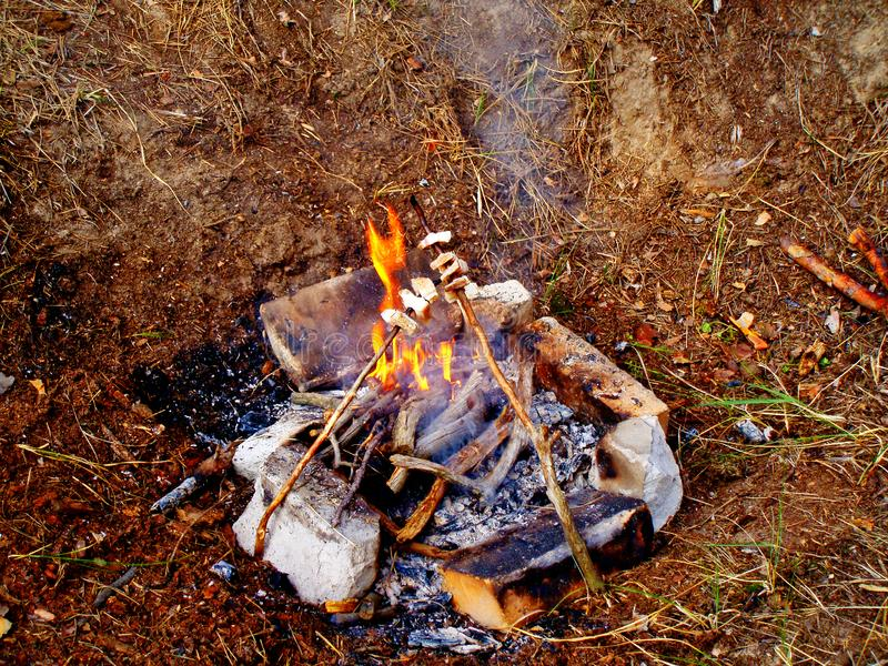 Picnic on the nature pieces of bacon fried on fire land royalty free stock photos