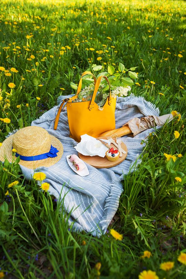 Picnic in nature, plaid on which the food-sire, baguette, cake, strawberry.  royalty free stock photos