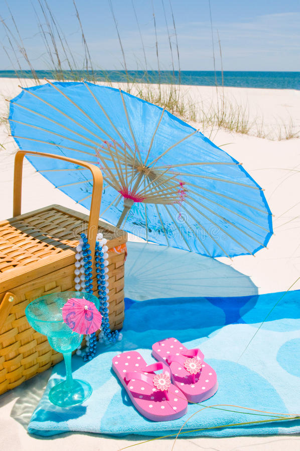 Free Picnic On The Beach Stock Photography - 14175412