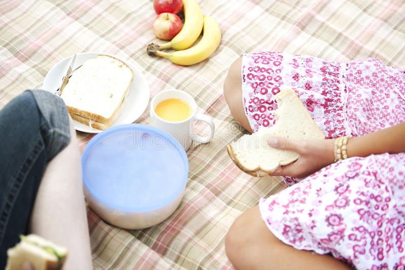 Picnic Overhead Sandwiches. Overhead view of two teenage girls having a picnic and eating sandwiches royalty free stock image