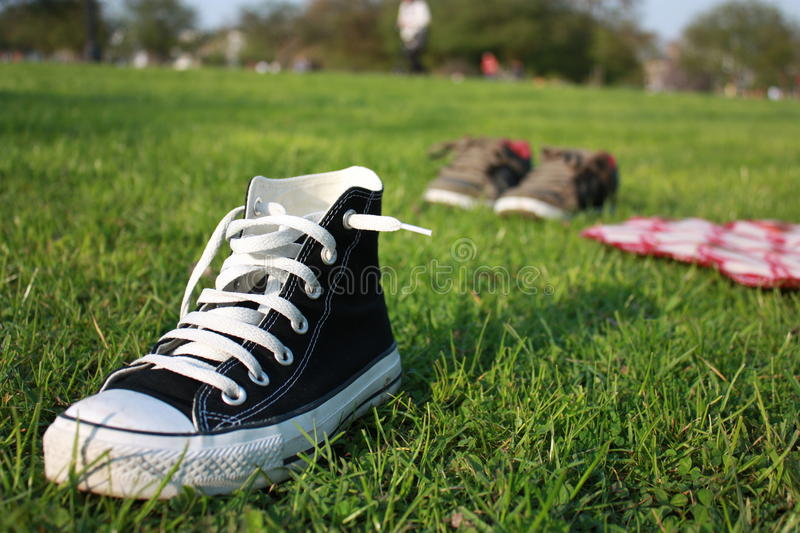 Download Picnic in the park stock photo. Image of picnic, summer - 13916400