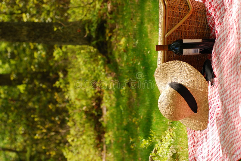 Picnic in the park stock photography