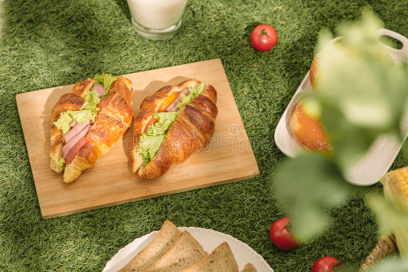 Picnic at the park on the grass with food and drink on blanket stock image