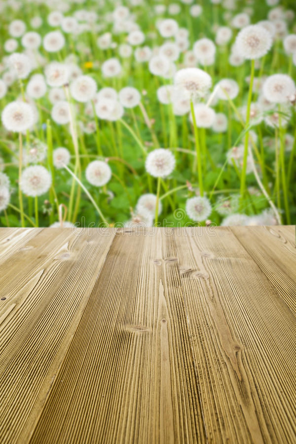 Free Picnic Table Stock Image - 37506271