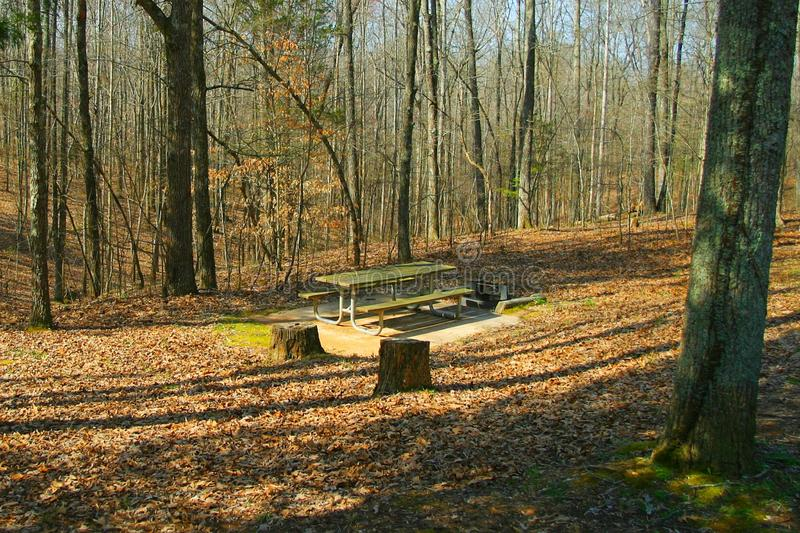 Picnic table in deep woods royalty free stock images