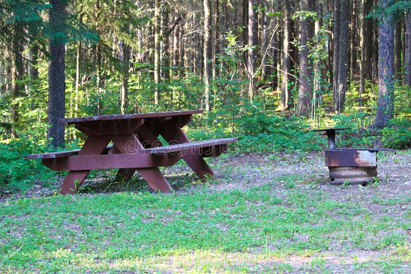 A picnic table and fire ring at a campsite.  stock image