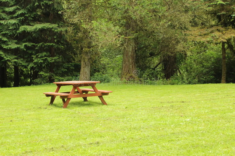 Picnic Table Green Field Stock Photo Image Of Park Site